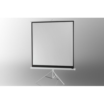 ecran de projection sur pied celexon economy 244 x 244 cm white edition fran ais french. Black Bedroom Furniture Sets. Home Design Ideas